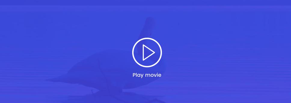 va-videobanner.png