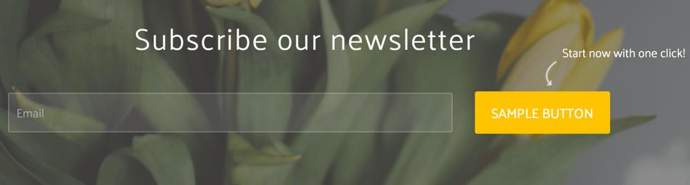 Sodium v2 - Blog Email Subscription.png